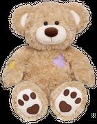 Teddybär: Champ