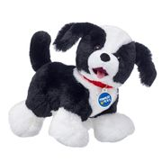 Promise Pets™ Border Collie
